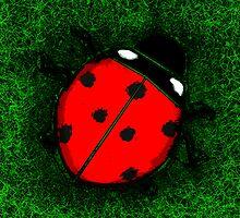 Ladybug by brickinthewall