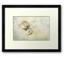 Hint of Gold Framed Print
