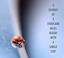A Journey of a Thousand Miles Begins with a Single Step by Carl Revell
