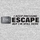 I KEEP PRESSING ESCAPE BUT ... by mcdba