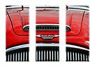 Austin Healey triptych by buttonpresser