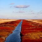 Red River Floodway by Larry Trupp