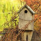 Autumn Home by lorilee