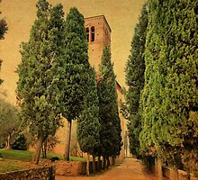 Welcoming Cypress-Sant' Anna in Comprena, Tuscany by Deborah Downes