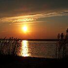 "Sunset over Barnegat Bay NJ. by Scott ""Bubba"" Brookshire"