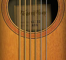 """Takamiphone"" Acoustic Guitar by Alisdair Binning"