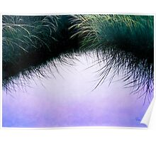"""Nature's Eyelashes"" Poster"