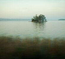 2011 - the isle  by moyo