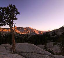 Olmstead Point Sunset - Yosemite National Park, CA by Matthew Kocin
