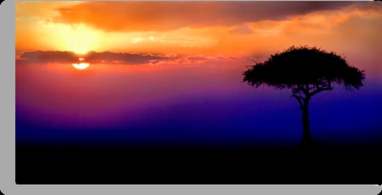 Sunset Over Masai Mara, Kenya III by Damienne Bingham