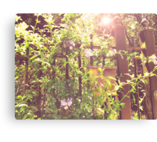 an unattended garden is my heart Canvas Print