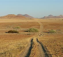 Track through Damaraland - Namibia by Austin Stevens