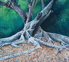 Morton Bay Fig by Jessica  Holliday