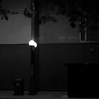 The lampost by Rene Fuller