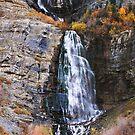 Bridal Veil Falls - Autumn Vertorama by Ryan Houston