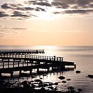 """The Boardwalk"" by Sue  Fellows"