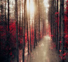 more than real by ildiko neer