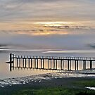 Sunrise On Tomales Bay, Inverness, Marin County, California by Scott Johnson