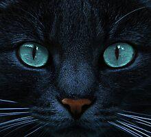 eyes of blue by Jo-PinX