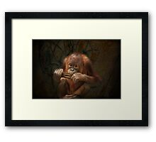 She Plays Harmonica Framed Print