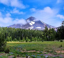 Middle Sister Three Sisters Wilderness by Don Siebel