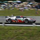 ALMS 2011 LRP Ford GT by gtexpert
