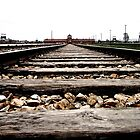 Tracks leading to Auschwitz by Wintermute69
