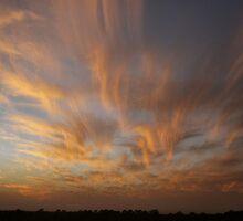 Brush Stroke Sunset 2 by Bryan Allen