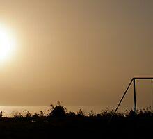 Hammocks and ash at sunset by fotovivencias