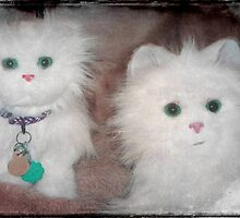 Snow Drop and Snow Puff ...aren't we adorable!!! © by Dawn M. Becker