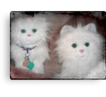 Snow Drop and Snow Puff ...aren't we adorable!!! © Canvas Print