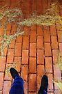 Seeking Rumpelstiltskin (Rustic Ballet) by RC deWinter