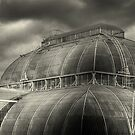 Kew Gardens, London, UK by strangelight