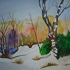 Early Winter by Debbie  Adams