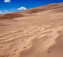 Sand Patterns - Great Sand Dunes, Colorado by Alex Zuccarelli