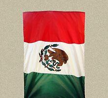 Mexico Calling by DAdeSimone