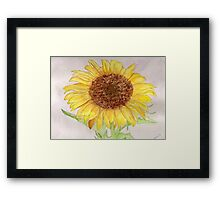 A Sunflower for Lady Liberty.  Framed Print