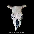 ARIZONA iPHONE case by DAdeSimone