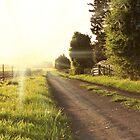 Sunset Lane by photosteak