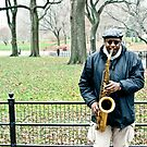 Busker In The Park by David Sundstrom