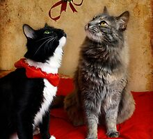 Jasper & Chloe under the mistletoe by Lynn Starner