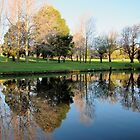 Stirk Park Reflections by Akrotiri