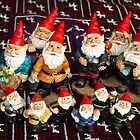 Gnomes Collective by Bev Pascoe