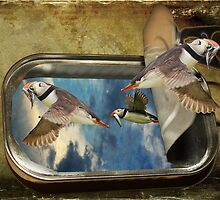 Sardines by Rookwood Studio ©
