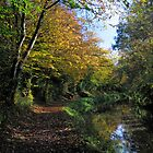 Monmouthshire and Brecon canal in Autumn. by Roly01