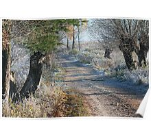 First frost in rural pathway Poster