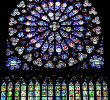 Notre-Dame Paris- South Rose window (2) by bubblehex08