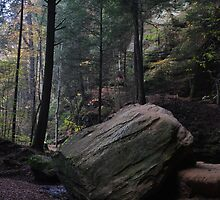 big rock at ash cave by 1busymom