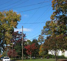 Fall 2011, Fall In Virginia by dge357