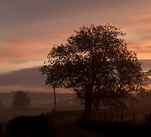 Endon Sunrise by Aggpup